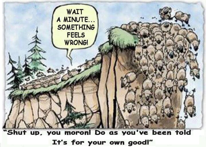 Over The Cliff Without A Lemming? - The Greening of Gavin