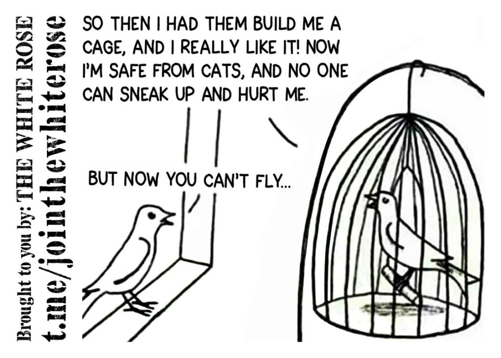 This image has an empty alt attribute; its file name is birdincage.cleaned.jpg