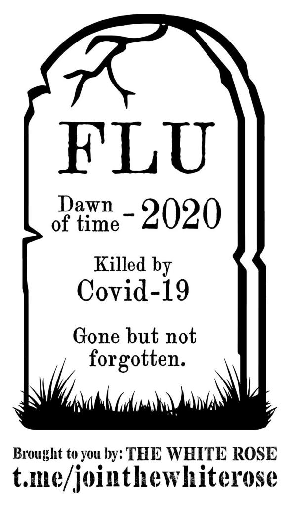 This image has an empty alt attribute; its file name is ripflu.cleaned.jpg
