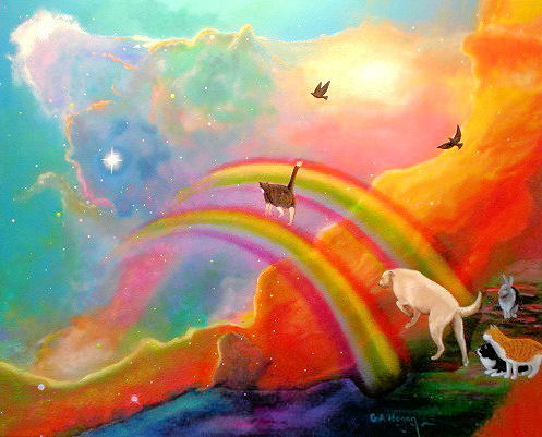 The Teacher's Pets: What Does Rainbow Bridge Mean To You ...