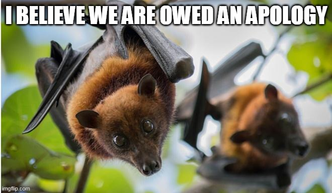 This image has an empty alt attribute; its file name is bats.jpg